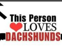 Dachshunds oh how i love.