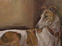 Wonderful sighthounds