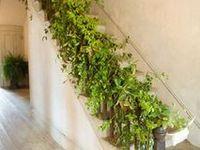 vine eclectic green wedding ideas