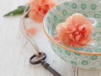 Peach/coral/Mint cottage