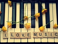 """""""Music speaks what cannot be expressed...soothes the mind and gives it rest...heals the heart and makes it whole...flows from heaven to the soul."""""""