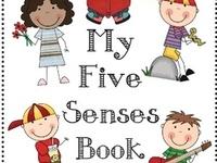 Kindergarten Five Senses
