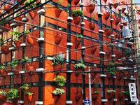 Architecture+Exterior Walls