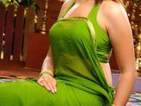 Indian women wear. Sarees, blouses, lehenga choli,