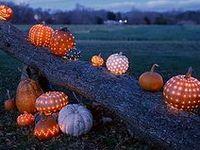 Jack-O-Lanterns, Gourds, Pumpkins