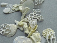 porcelain, earthenware, stoneware, occasionally polymer clay