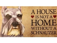 all things schnauzers and then some