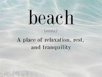 sea shells and beaches