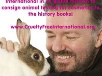 No animal testing products I love