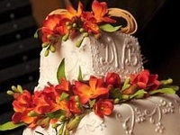 FOOD Cake Design