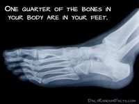 Podiatry most interesting topics for research paper