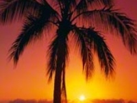 sunrise & sunsets & moons