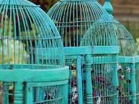 Always better empty...and Birdhouses, always better full!