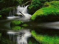 Beautiful Waterfall, Lakes, Ponds, Rivers, Seas