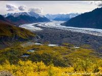 """""""Chasing Ursa Maior"""": 28 days / mid-Aug till early Sept/ hiking Harding Icefield Trail (2d) and sea kayaking or paddle boarding the Bear Glacier Lagoon with Liquid Adventures in KENAI NP, bears watching in KATMAI NP, hiking Ä'äy Chù (Slim's River) West/East to Observation Mountain (3-4d), hiking Goatherd Mt. overlooking Lowell Glacier (2d) and flightseeing in KLUANE NP; flightseeing and polar bears watching in ANWR; kayaking Alatna river & hiking Arrigetch Peaks in GATES OF THE ARCTIC NP."""