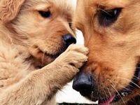 How cute!!
