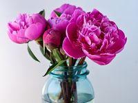 Material-flowers