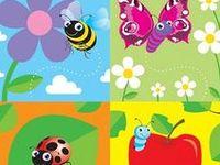 Lepkék,méhek,bogarak / Butterflies,bees,bugs