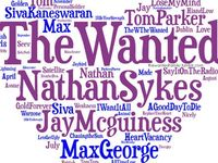 The Wanted ❤️