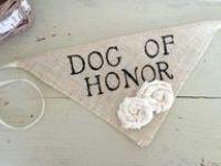 Wedding ♥ Dogs