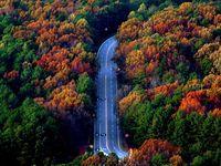 Long & Winding Road