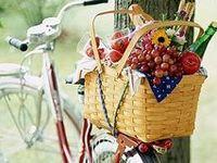 BICICLETA E FLORES / BIKE AND FLOWERS