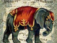 Elefantes / Elefantes - desenhos