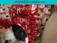 Doggy Valentine's / Dog Valentine's