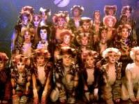 Cats The Musical♡