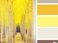 color inspiration 1