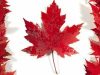 Canada Day / Great ideas for our Red and White party.  Everything from food and drinks to decorations and games/craft ideas.