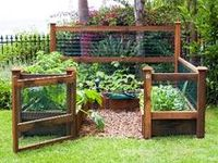 17 Best Images About Vegetable Garden Enclosure On