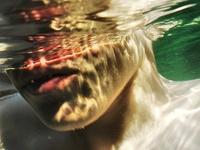 º ˚≈ água ≈˚º ˚