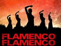 I love Flamenco. I used to study it & performed a few times only but because I have seizures I had to stop. My mother also done flamenco dancing when she was young & I have her picture framed. PLEASE DON'T PIN MORE THAN 20 pins at a time.
