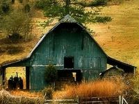 History of an animal or a seed, then sheltered in a beautiful edifice.