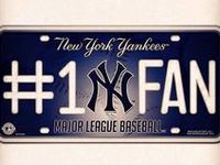Dedicated to the BEST team in baseball!!