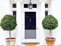 home & design / Dream house below: