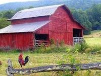 Barns, Horses and Country Images I Love