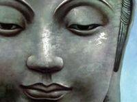 Zen, Meditation, Yoga and more