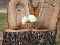 log furnitures and log houses