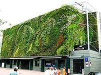 GARDEN - Green Walls / Green City