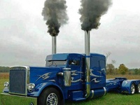 Show and shine trucks