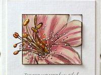 handmade cards by birgit edblom aka biggan on splitcoast stampers