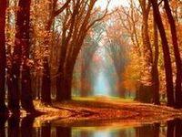 ༺Autumn༻
