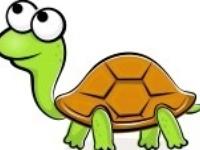 Thema schildpadden kleuters, lessen en knutselen / Turtles theme preschool, lessons and crafts