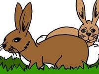 Thema konijnen kleuters, lessen en knutselen / Rabbit theme preschool, lessons and crafts