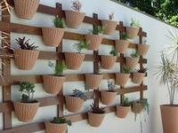 jardins decorativos / plantas decorativas e perigosas