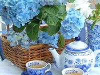look also to my pins on the board: hydrangea: home design and the board: hydrangea 2