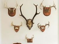 Ultimate Hunting Lodge :: Stuff We Like on Pinterest | Lodges, Antlers ...