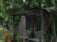 to inspire your own creativity in creating a primitive garden ~